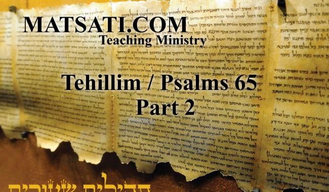 Video-Psalms-65-Part 2_Psalms