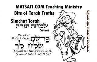 Video-Parshiot-Shelach Lecha-02