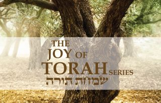 BBT-JoyTorah-Cover-02-02