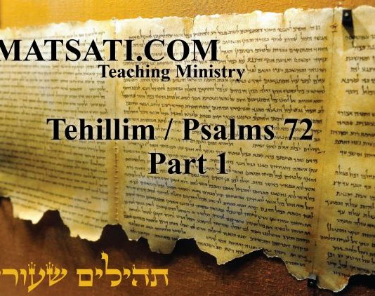 Tehillim | MATSATI COM Teaching Ministry | Page 8
