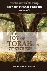 Bits of Torah Truths, Volume 3, The Joy of Torah